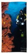 Diver And Sea Fans, Fiji Beach Towel