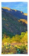 Dog Canyon Nm Oliver Lee Memorial State Park Beach Towel