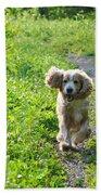 Dog Running In The Green Field Beach Towel