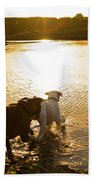 Dogs At Sunset Beach Towel by Stephanie McDowell