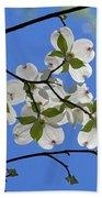 Dogwood Blossoms 2 Beach Sheet