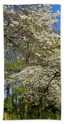 Dogwood Grove Beach Towel by Debra and Dave Vanderlaan