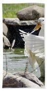 Doin The Duck Splash Beach Towel