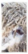 Dolly Dwc Beach Towel