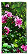 Double Rose Of Sharon Beach Towel