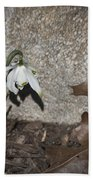 Double Snowdrops Beach Towel