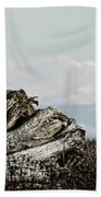Dozing With Mount Baker Beach Towel