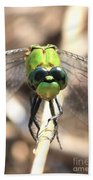 Dragonfly Perspective Beach Towel by Carol Groenen