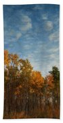 Dressed In Autumn Colors Beach Towel by Priska Wettstein