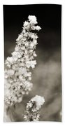 Dried Flower And Crystals 2 Beach Towel