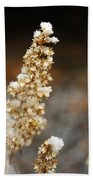 Dried Flower And Crystals Beach Towel