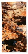 Driftwood 2 Beach Towel