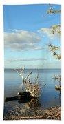 Driftwood Landscape 1 Beach Towel