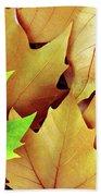 Dry Fall Leaves Beach Towel by Carlos Caetano