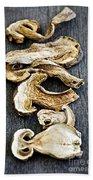Dry Porcini Mushrooms Beach Towel by Elena Elisseeva