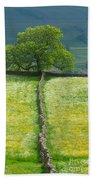 Dry Stone Wall And Lone Tree Beach Towel
