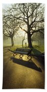 Dublin - Parks, St. Stephens Green Beach Towel