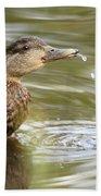 Duck Spits Beach Towel