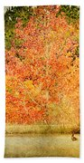 Ducks In An Autumn Pond Beach Towel