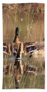 Ducks Of Douglas Beach Towel