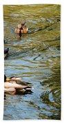 Ducks On The Water Beach Towel