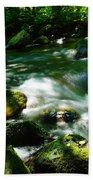 Eagle Creek  Beach Towel