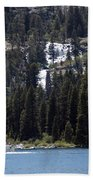 Eagle Falls Beach Towel