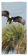 Eagle In The Palm Beach Towel