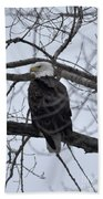 Eagle In The Wild Beach Towel