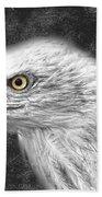 Eagle Two Beach Towel