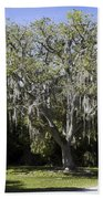 Ear Tree Beach Towel