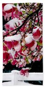 Early Magnolia Late Snow Beach Towel