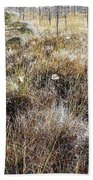 Early Morning Landscape Beach Towel