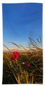 Early Poppies Beach Towel