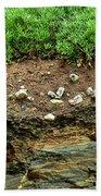 Earth Cross Section Beach Towel
