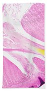 Earthworm, Transverse Section Beach Towel