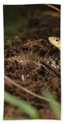 Eastern Garter Snake - Checkered Coloration Beach Towel