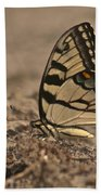 Eastern Tiger Swallowtail 8542 3219 Beach Towel
