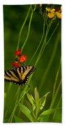 Eastern Tiger Swallowtail Beach Towel