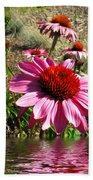 Echinacea In Water Beach Towel