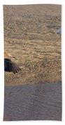 Egret Territory Beach Towel