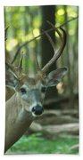 Eight Point And Fawn_9532_4367 Beach Towel