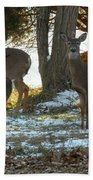 Eleven Deer Standing Beach Towel