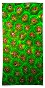 Emerald Coral Beach Towel