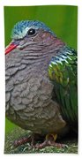 Emerald Ground Dove Beach Towel