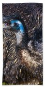 Emu Beach Towel