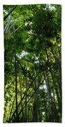 Enchanted Forest Haleakala National Park Beach Towel