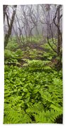 Enchanted Woodland Forest In Fog Blue Ridge Parkway In North Carolina Beach Towel