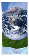 Environmental Issues Beach Towel by Victor de Schwanberg  and Photo Researchers