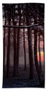 Ethereal Forest Beach Towel